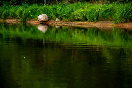 Landscape of river, green long grass and stones on the coast. Green forest reflection in water. Gauja is the longest river in Latvia, which is located only in the territory of Latvia. 写真素材