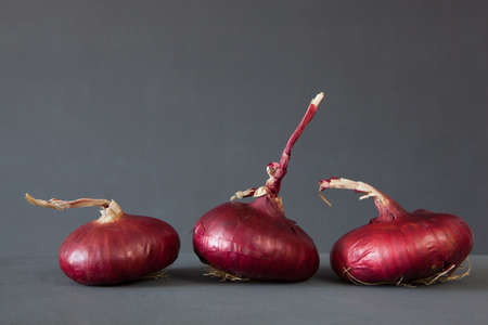 aftertaste: Red onions close up on dark background