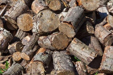 wood cut: pile of fresh cut wood Stock Photo