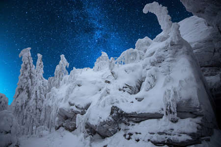 Winter forest in the mountains with a starry sky Фото со стока