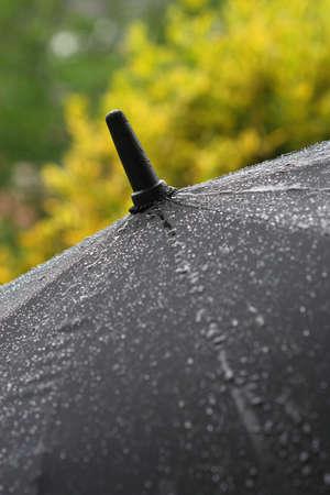 impermeable: Umbrella