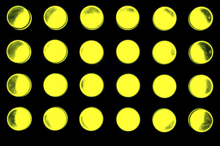 leds: 24 colorful LEDs radiate into space