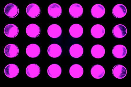 leds: 24 LEDs de colores irradian hacia el espacio