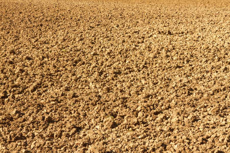 plowed: An evenly plowed brownfield as background.