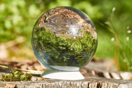 A crystal ball is in the sun on a tree stump.