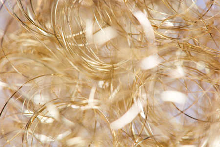 Close-up with brightly illuminated angel hair as background. Imagens