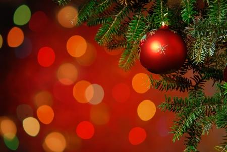 navidad elegante: ?rbol de Navidad Decoraci?n del ?rbol de Navidad iluminado de fondo