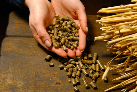 wood pellet: alternative biofuel from straw combustion in furnaces Stock Photo