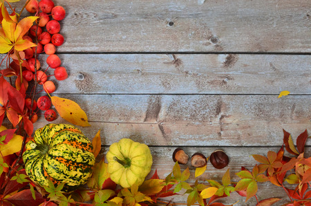 autumn leaves, fruits and vegetables against the background of bright boards Stock Photo