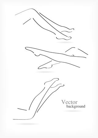 Female legs set. Illustration