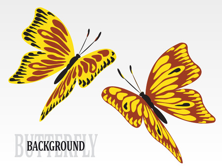 Set of colorful art butterflies on white background
