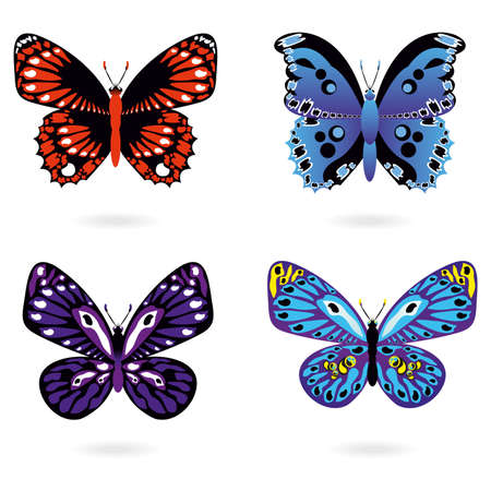 Set of colored butterflies on white background Vector Illustration