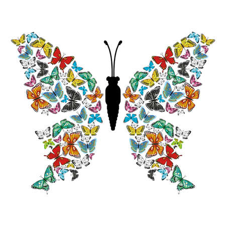 The butterfly is composed of other multi-colored butterflies and black and white silhouette