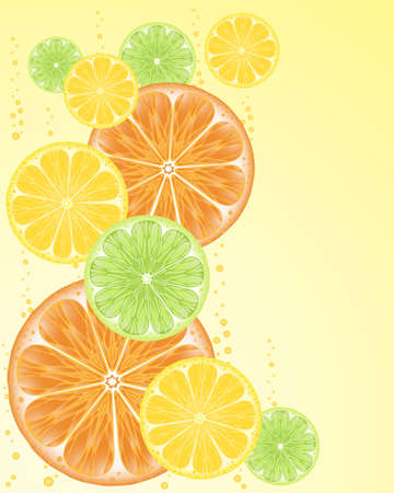 zest: an illustration of orange lemon and lime fruit slices on a pale yellow background with bubbles