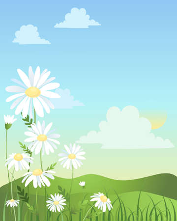 an illustration of summer flowering daisies with green hills and grass under a blue sky Stock Vector - 12328882