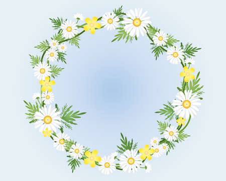 buttercups: an illustration of a decorative camomile flower and foliage wreath on a sky blue background Illustration
