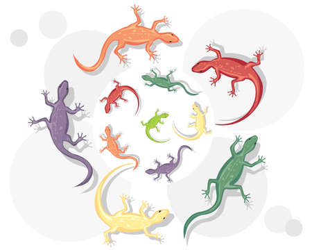 an abstract  illustration of colorful lizards in a circular pattern on a white and gray background