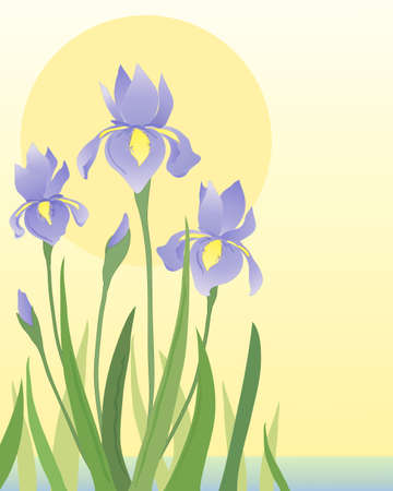 an illustration of beautiful blue iris flowers and foliage in an aquatic setting