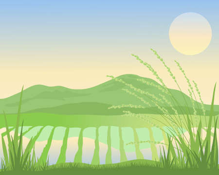 an illustration of an exotic sunset over green rice paddy fields and hills