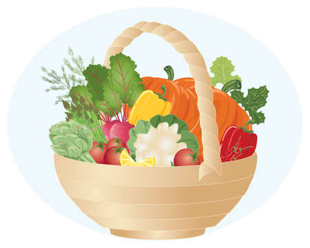 an illustration of a hamper full of colorful home grown organic vegetables on a blue background Vector