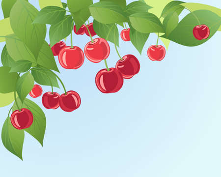 fruit stalk: an illustration of ripe red juicy cherries on a tree with foliage background and blue sky Illustration