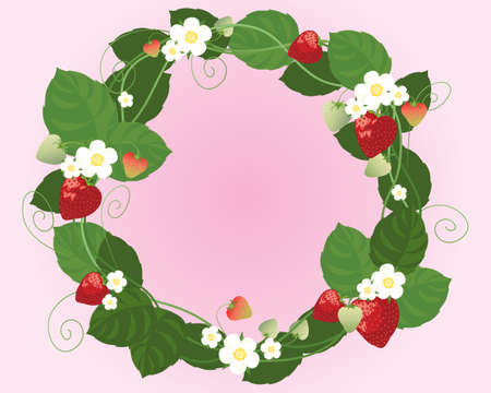 summer diet: an illustration of strawberry fruits flowers and foliage made up in to a circular design on a candy pink background Illustration