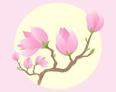 flores exoticas: una ilustración de una rama de hermosas flores de magnolia de color rosa que se abren bajo un sol amarillo grande