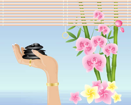 restful: an illustration of a hand holding black spa pebbles with bamboo orchids and frangipani flowers in shallow fresh water with raffia blind Illustration