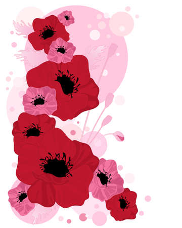 an illustration of abstract poppy flowers with seedheads buds and a candy pink bubble background on white