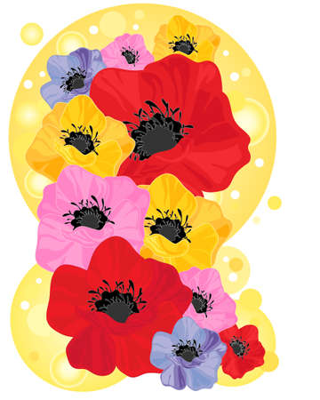 an illustration of colorful poppy flowers in red yellow pink and purple with bubble background on white Stock Vector - 14323938