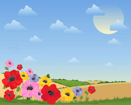 hedgerows: an illustration of colorful poppy flowers in front of a summer landscape with rolling hills hedgerows and fluffy clouds