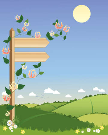 hedgerows: an illustration of a wooden signpost with climbing honeysuckle pointing towards a scenic footpath with hedgerows under a summer blue sky