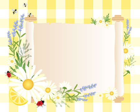 still life flowers: an illustration of a blank parchment scroll with daisy ladybug lemon dill lavender and bees decoration around the edge with a yellow gingham background