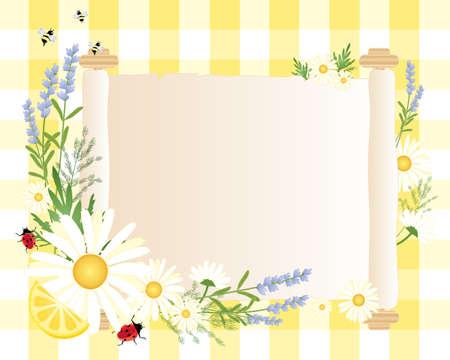 natura morta con fiori: l'illustrazione di una pergamena in bianco scorrere con coccinella lavanda margherita di limone aneto e la decorazione api intorno al bordo con uno sfondo giallo percalle