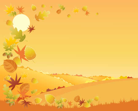patchwork landscape: an illustration of a colorful autumn landscape with hedgerows and patchwork fields and a swirl of falling leaves under an orange sky