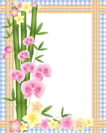 pink orchid: an illustration of green bamboo shoots with a pink orchid and frangipani flowers on a purple gingham background with a white space in the middle for text Illustration
