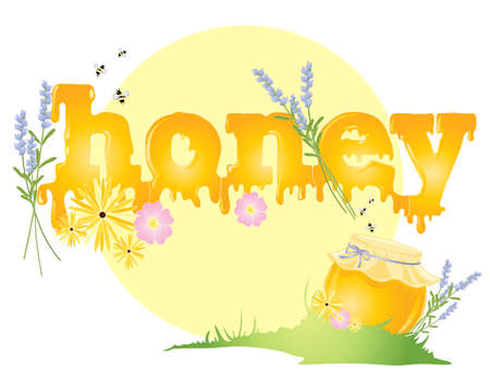 an illustration of a big yellow sun with the word honey in golden dripping letters with honey jar and colorful flowers in grass on a white background Vector