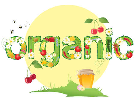 an illustration of the word organic decorated with flowers leaves and produce with bees honey pot and a big yellow sun Stock Vector - 15050095