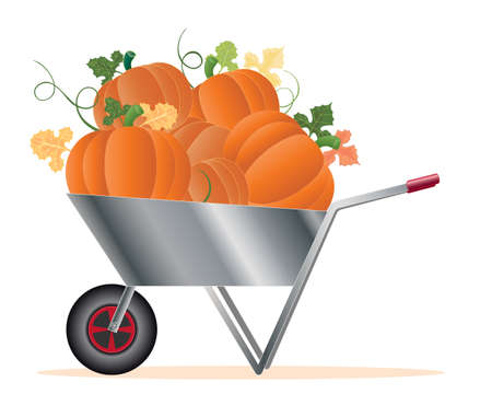 an illustration of a silver wheelbarrow full of ripe pumpkins with vine and foliage isolated on a white background Stock Vector - 15974366