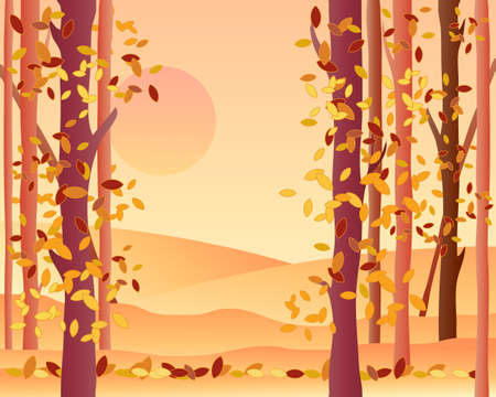 an illustration of the edge of an autumn forest with orange fields leaves falling and a warm sunset Stock Vector - 16645980