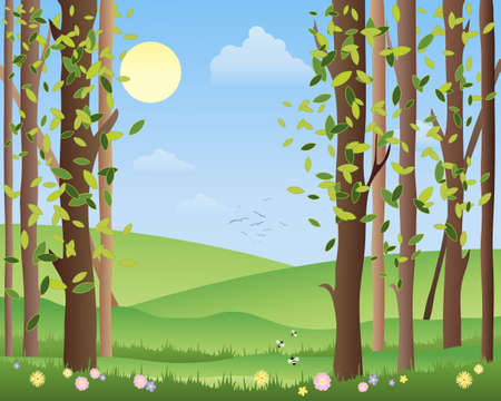 an illustration of the edge of a summer forest with green fields sunshine and fluffy clouds under a warm blue sky Stock Vector - 16645982