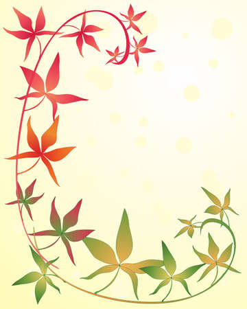 an illustration of a crimson gold and green virginia creeper with colorful foliage on a sunshine background Stock Vector - 18447049