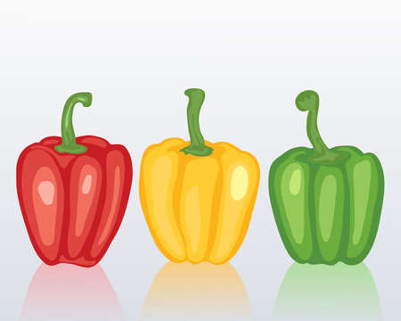 home grown: an illustration of red green and yellow sweet peppers with reflections on a blue gray background Illustration