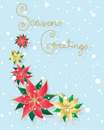 seasons greetings: an illustration of a traditional christmas card with the words seasons greetings in gold and red and green pointsettia flowers on a blue snowy background