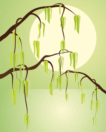 watery: an illustration of hazel catkins with dark branches in front of a yellow sun over green watery background