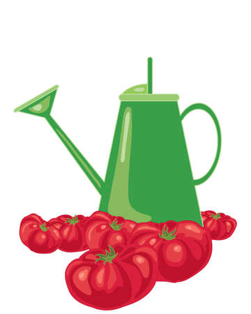 home grown: an illustration of a bright green watering can surrounded by ripe juicy red tomatoes on a white background