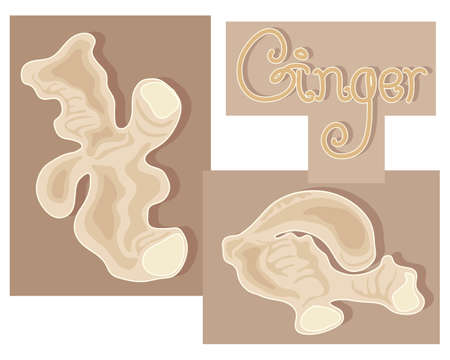 ginger root: an illustration of pieces of fresh ginger root and the word ginger on an abstract background