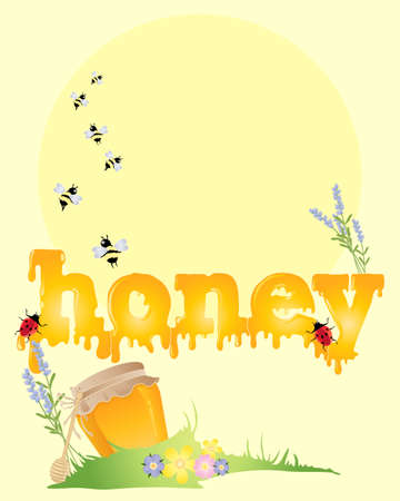 sunshine background: an illustration of the word honey with bees flowers ladybugs and honey pot on a sunshine background Illustration