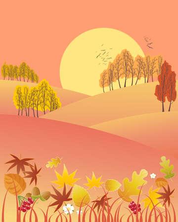 ciel rouge: une illustration d'un paysage soir automne chute d'arbres color�s laisse et un grand soleil sur un ciel rouge Illustration