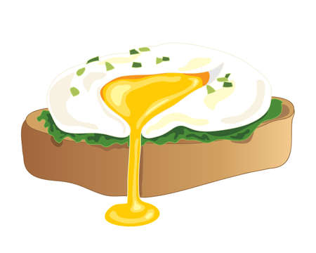chive: an illustration of a freshly poached egg with chive garnish on a piece of toast with a yellow yolk oozing on a white background